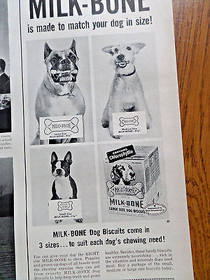 1953 Milk-Bone Dog Biscuits Ad Boxer Boston Terrier Fox Schnauzer Dogs