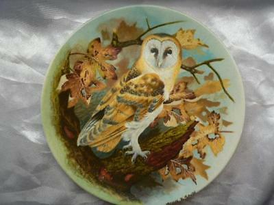 Coalport  Bone  China Collectors Plate BARN OWL  The Wise Owl Michael B. Sawdy