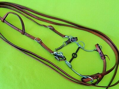 QUALITY COMPLETE Bridle~Long Shank LIFE SAVER Bit~Headstall~8' Harness REINS~NR