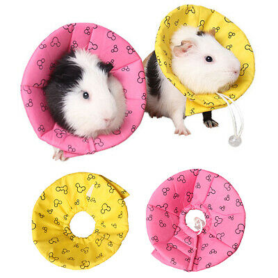 Pet Small Animal Elizabethan Collar Neck Cone Collar for Hamster Guinea Pig Mice