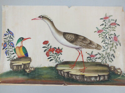 18) FINE CHINESE WATER COLOUR STUDY ON RICE/PITH PAPER OF BIRDS & FOLIAGE 19thC