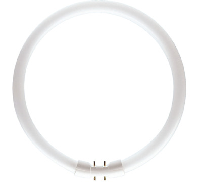 PHILIPS Master TL5 55W 840 2GX13 neon circular cold light 4100K - batch 5 pipes