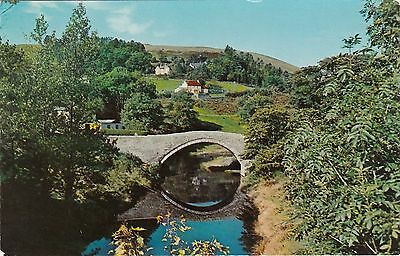 The Bridge & Isolated Houses, PONTERWYD, Cardiganshire