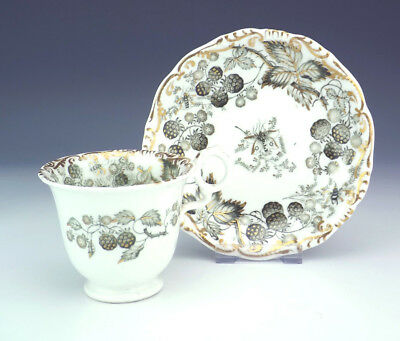 Vintage Grainger Worcester China - Blackberry - Butterfly Decorated Cup & Saucer