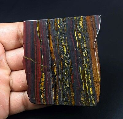 402.50 Cts. 100% Natural Multi Iron Tiger Slice For Making Cabochons