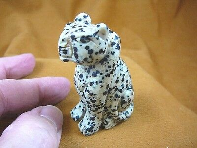 Y-CHE-704) White black spotted CHEETAH gemstone GEM carving wild CATS cat statue