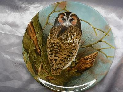 Coalport  Bone  China Collectors Plate TAWNY OWL  The Wise Owl Michael B. Sawdy
