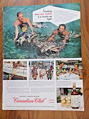 1951 Canadian Club Whiskey Ad Mexico Deep Sea Turtles Camel Cigarette Ad Munsel