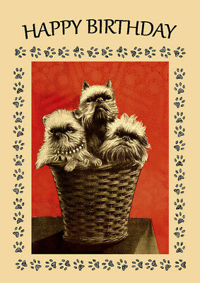 Brussels Griffon  Three Dogs In Basket Dog Birthday Greetings Note Card