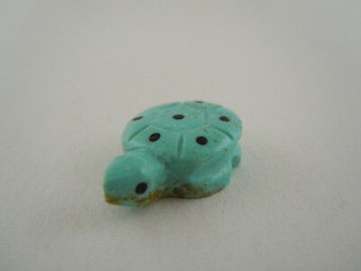 Turquoise Zuni Baby Spotted Turtle Hatchling Fetish Carving Terrence Martza 37