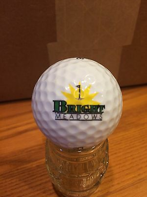 Bright Meadows Logo Golf Ball, Old Vintage