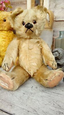 Basil 1930's Chad Valley Bear sweet old chap 13 inches