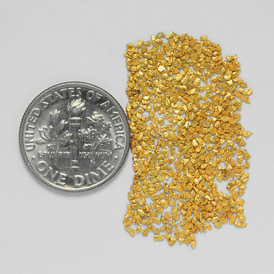 0.8294 Gram Alaskan Natural Gold Nuggets - (#20716) - Hand-Picked Quality