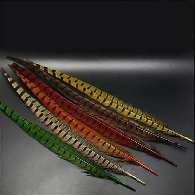 6 Colors 35cm-45cm Peasant Feather& Ringneck Pheasant Tail Fly Tying Material