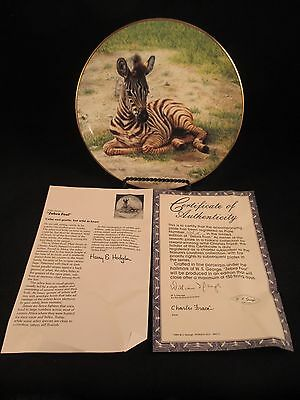 Zebra Foal Nature's Lovables Plate Collection 7th in Series COA