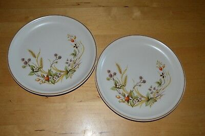 Marks and Spencer Harvest Salad Plate x 2