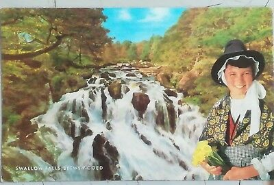 Wales , Swallow Falls, Betwys-Y-Coed Unused Postcard From Collection E1