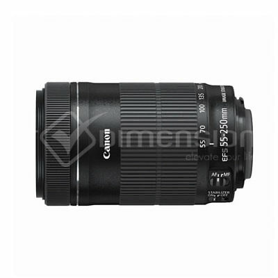 Canon EF-S 55-250mm f/4-5.6 IS STM Lens Bulk Brand New gft Ship From EU