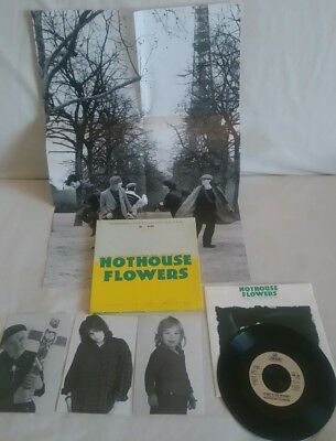 Hothouse Flowers Easier in the Morning Ltd Edtn Numbered b/set + poster/p/cards
