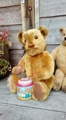 Lewis 1940s Mohair Teddy Bear invicta 18 inches