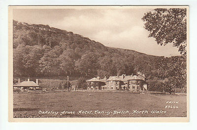 Oakeley Arms Hotel Tan-y-Bwlch Merioneth 1931 Frith's 83646 Old Postcard