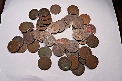 (50) Mixed 1800's Large Cent Lot // 50 Coins // (LCL18)