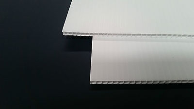 CORFLUTE BOARD WHITE 615mm x 915mm x 5mm x 30 SHEETS