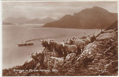Entrance To Harbour & Sheep, PORTREE, Isle Of Skye, Inverness-shire RP