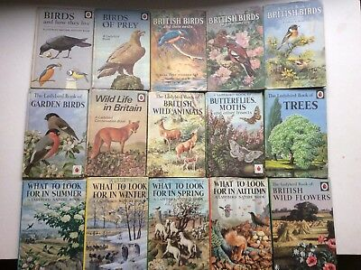 Vtg Job Lot Ladybird Books Lot 2 Dj Wildlife British Birds 727 536 Spring Summer
