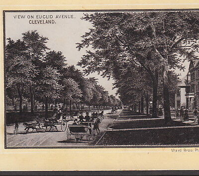 Cleveland 1890's View on Euclid Ave Bicycle photo-style Jersey Coffee TRADE CARD