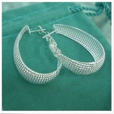 HOT wholesale Fine Jewelry Solid 925Silver Fashion beautiful Earrings