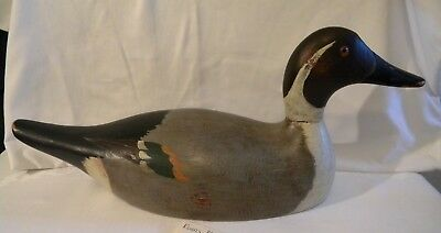 "EVANS DECOY MAMMOTH DRAKE PINTAIL 19"" duck decoy"