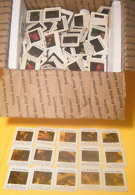 Latent Image Slides - Huge Vintage Lot Collection Of 236 Adult California Sleaze
