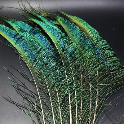 5pcs/Set Real Natural Genuine Peacock Feather Sword Fly Tying Magerial