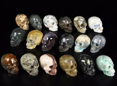 HAMINE, AFRICAN BLOODSTONE, SODALITE...Carved Crystal Skull Lots