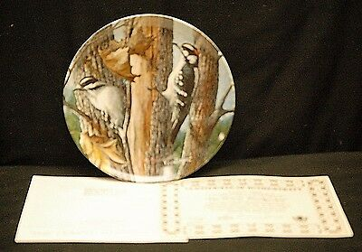 The Downy Woodpecker Collector Plate 1987 Your Garden Collection Edwin Knowles