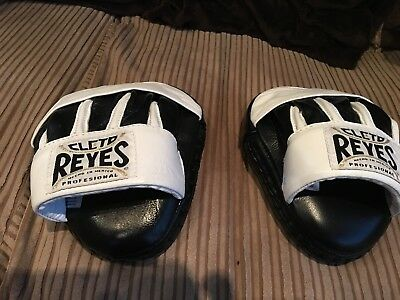 Cleto Reyes Professional boxing  Pads