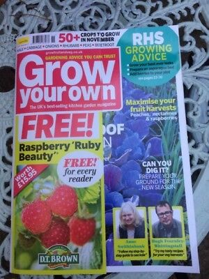 Grow Your Own Magazine November 2017 issue RRP £5.99 + 2 packets of seeds