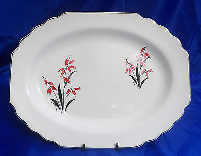 """LIDO WS George 11"""" Oval Serving Platter #58612-H Rust Flowers, White Background"""