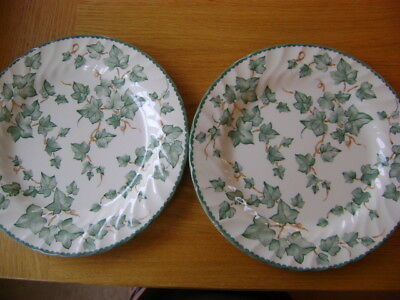 Bhs  Country Vine    2 Large Dinner Plates