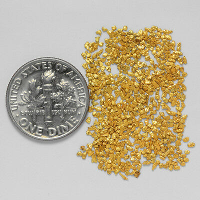 0.9491 Gram Alaskan Natural Gold Nuggets - (#20878) - Hand-Picked Quality