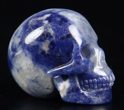 "2.0"" SODALITE Carved Crystal Skull, Realistic, Crystal Healing"