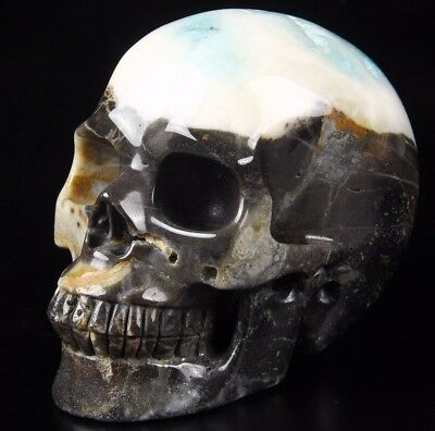 "Huge 4.9"" CHINESE AMAZONITE Carved Crystal Skull, Realistic, Crystal Healing"