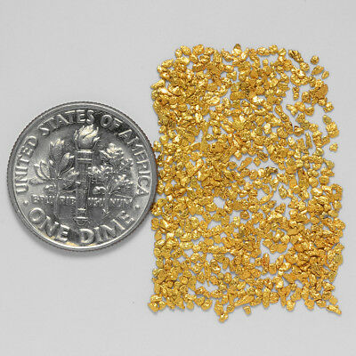 0.6127 Gram Alaskan Natural Gold Nuggets - (#20923) - Hand-Picked Quality