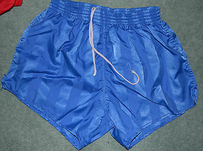 Vintage Shiny Blue Shorts - Medium