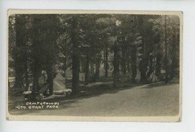 Mr Fancy Cancel Real Photo Used General Grant National Park 1918 Card #3163