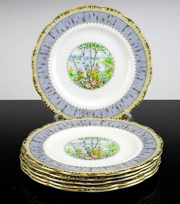 "Very Nice Royal Albert Silver Birch Pattern Set Of 6 Side Plates 7 1/8"" England"