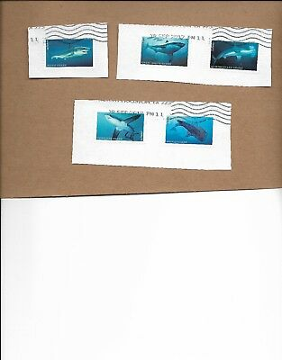 Scott 5223-27 2017  New Shark Stamps Set Of Five Used On Paper