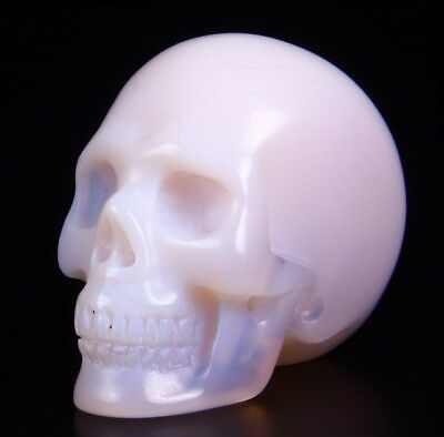 "1.5"" UNKNOWN STONE Carved Crystal Skull, Realistic, Crystal Healing"