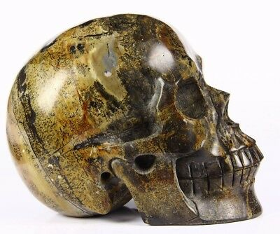 "Huge 5.0"" CHINESE PAINTING STONE Carved Crystal Skull, Realistic, Healing"